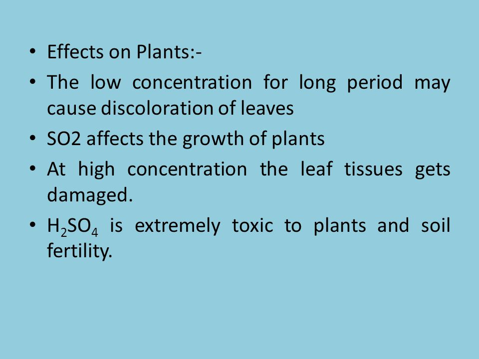 Effects on Plants:- The low concentration for long period may cause discoloration of leaves SO2 affects the growth of plants At high concentration the