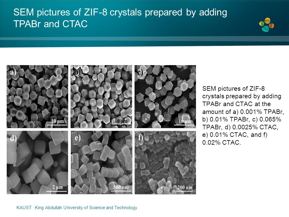 SEM pictures of ZIF-8 crystals prepared by adding TPABr and CTAC at the amount of a) 0.001% TPABr, b) 0.01% TPABr, c) 0.065% TPABr, d) 0.0025% CTAC, e) 0.01% CTAC, and f) 0.02% CTAC.