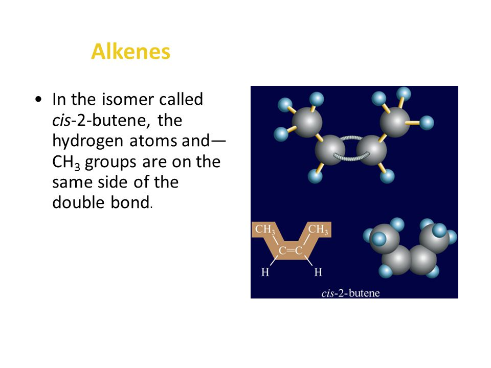 Alkenes The formation of a double bond prevents the carbons on each side of the bond from rotating with respect to each other.
