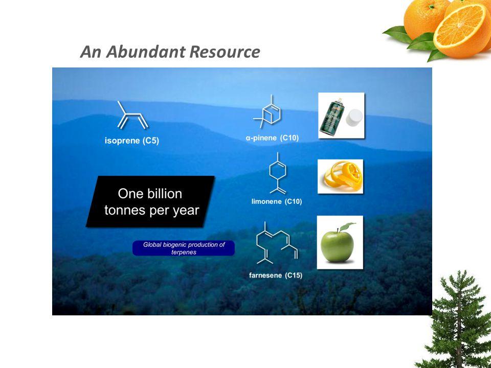 An Abundant Resource
