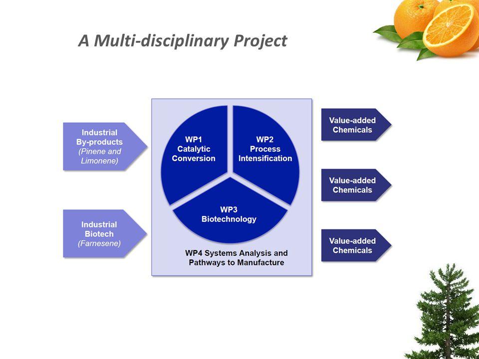 A Multi-disciplinary Project