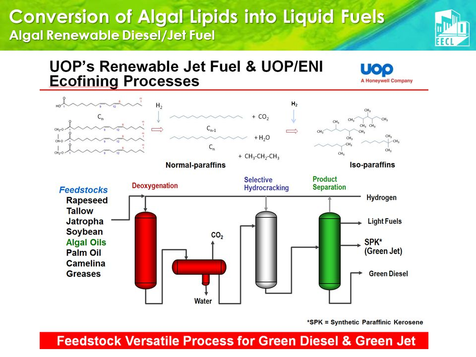 Conversion of Algal Lipids into Liquid Fuels Algal Renewable Diesel/Jet Fuel