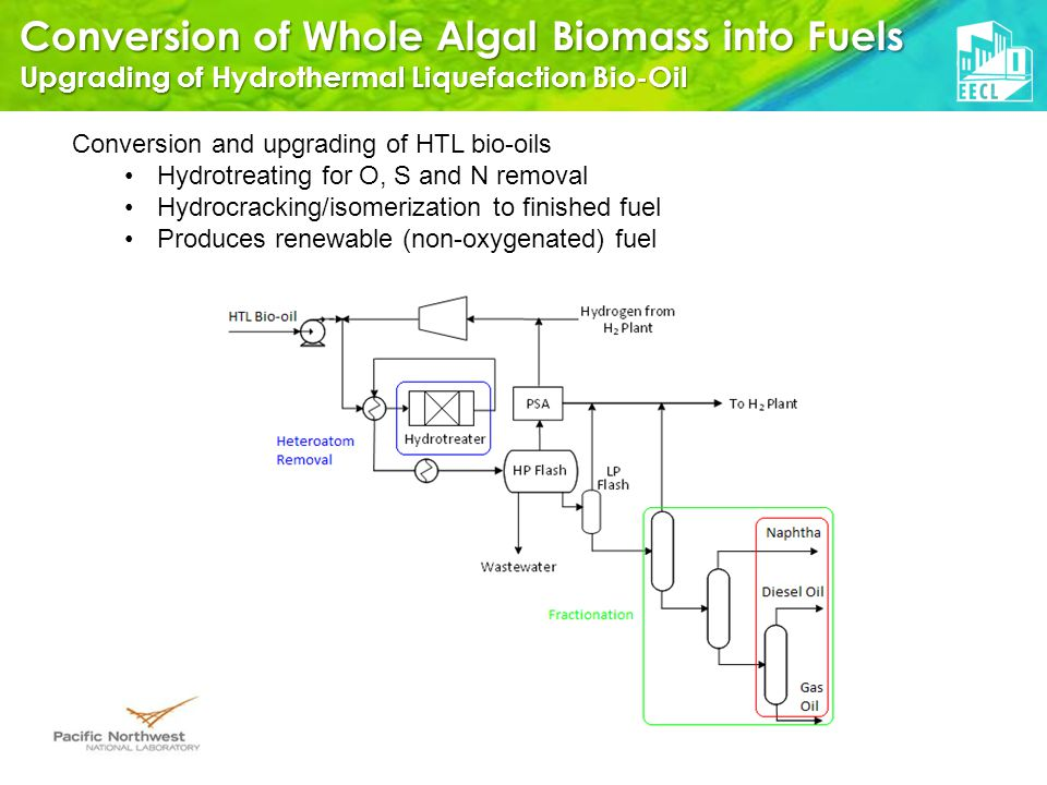 Conversion of Whole Algal Biomass into Fuels Upgrading of Hydrothermal Liquefaction Bio-Oil Conversion and upgrading of HTL bio-oils Hydrotreating for O, S and N removal Hydrocracking/isomerization to finished fuel Produces renewable (non-oxygenated) fuel