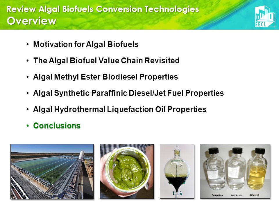 Review Algal Biofuels Conversion Technologies Overview Motivation for Algal Biofuels The Algal Biofuel Value Chain Revisited Algal Methyl Ester Biodiesel Properties Algal Synthetic Paraffinic Diesel/Jet Fuel Properties Algal Hydrothermal Liquefaction Oil Properties ConclusionsConclusions