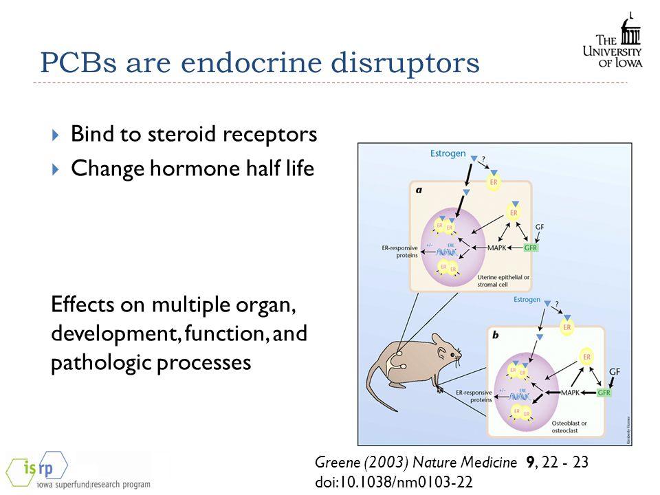 PCBs are endocrine disruptors  Bind to steroid receptors  Change hormone half life Effects on multiple organ, development, function, and pathologic processes Greene (2003) Nature Medicine 9, 22 - 23 doi:10.1038/nm0103-22