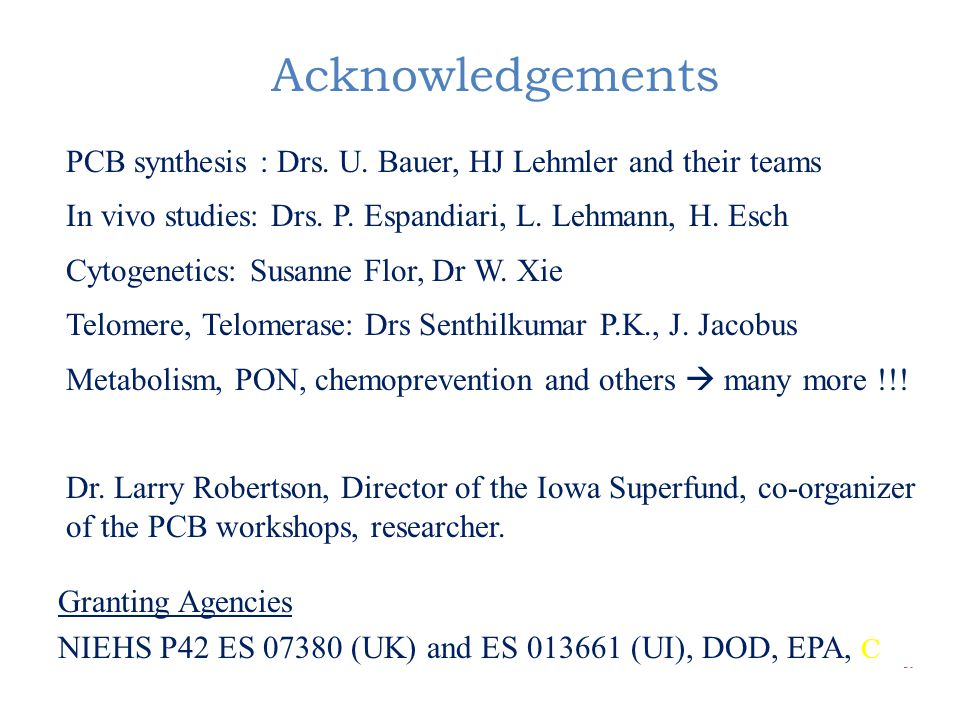 Acknowledgements PCB synthesis : Drs. U. Bauer, HJ Lehmler and their teams In vivo studies: Drs.