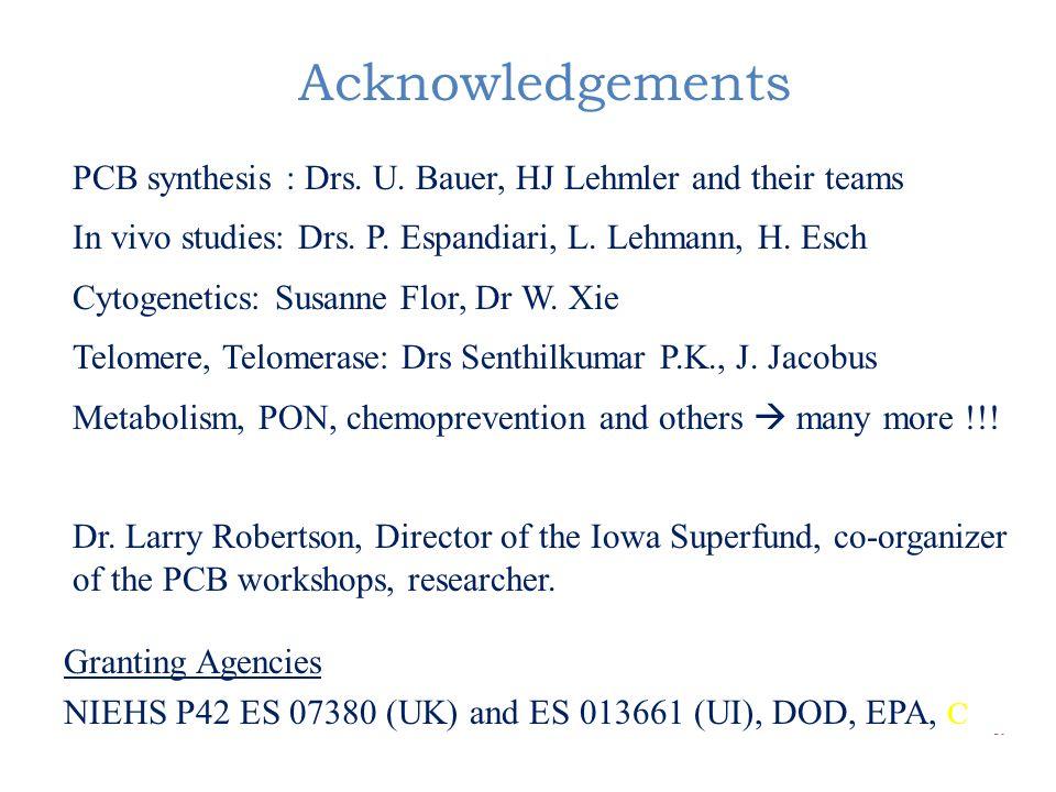 Acknowledgements PCB synthesis : Drs. U. Bauer, HJ Lehmler and their teams In vivo studies: Drs. P. Espandiari, L. Lehmann, H. Esch Cytogenetics: Susa