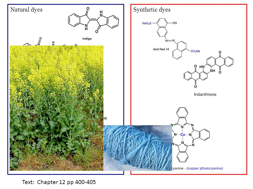 Synthetic dyesNatural dyes Text: Chapter 12 pp 400-405
