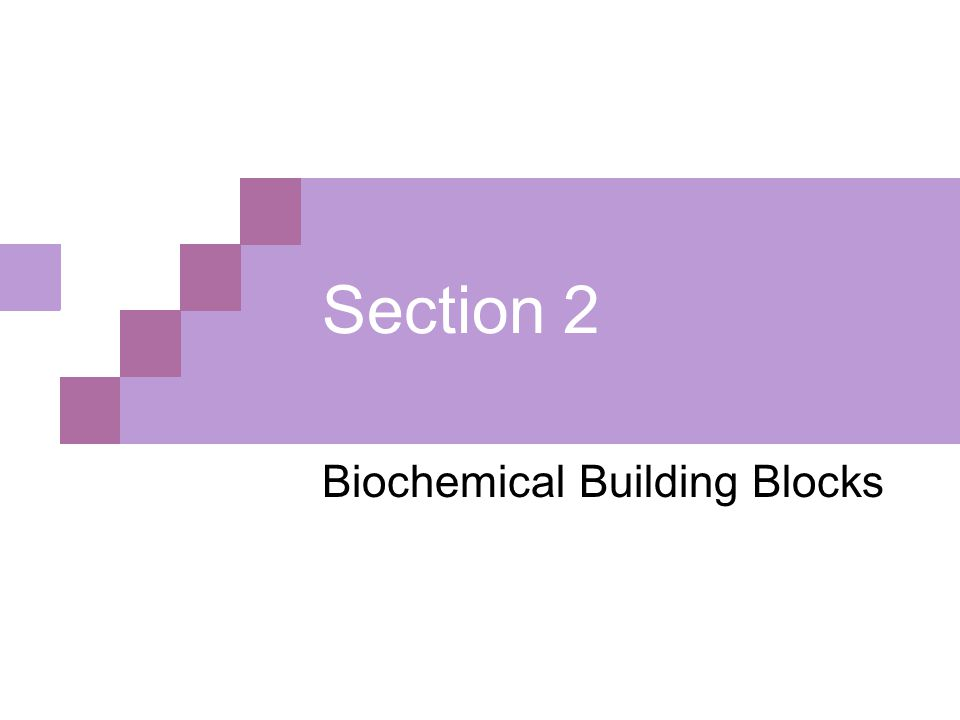 Section 2 Biochemical Building Blocks