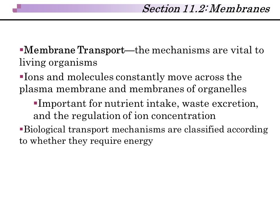  Membrane Transport—the mechanisms are vital to living organisms  Ions and molecules constantly move across the plasma membrane and membranes of org