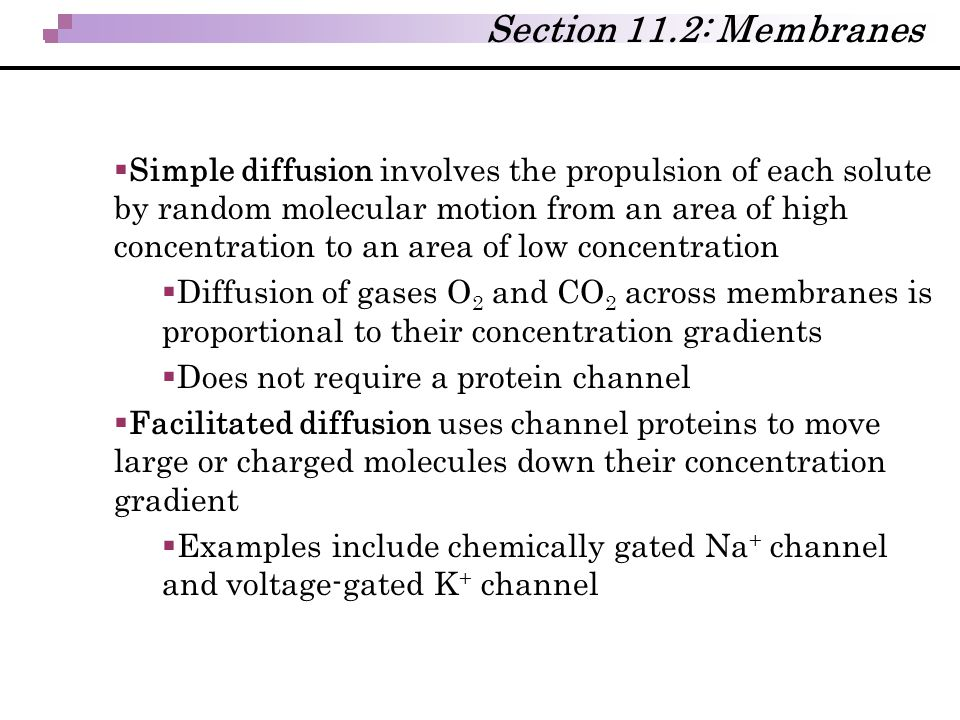  Simple diffusion involves the propulsion of each solute by random molecular motion from an area of high concentration to an area of low concentratio