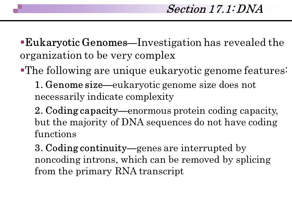  Eukaryotic Genomes — Investigation has revealed the organization to be very complex  The following are unique eukaryotic genome features: 1. Genome