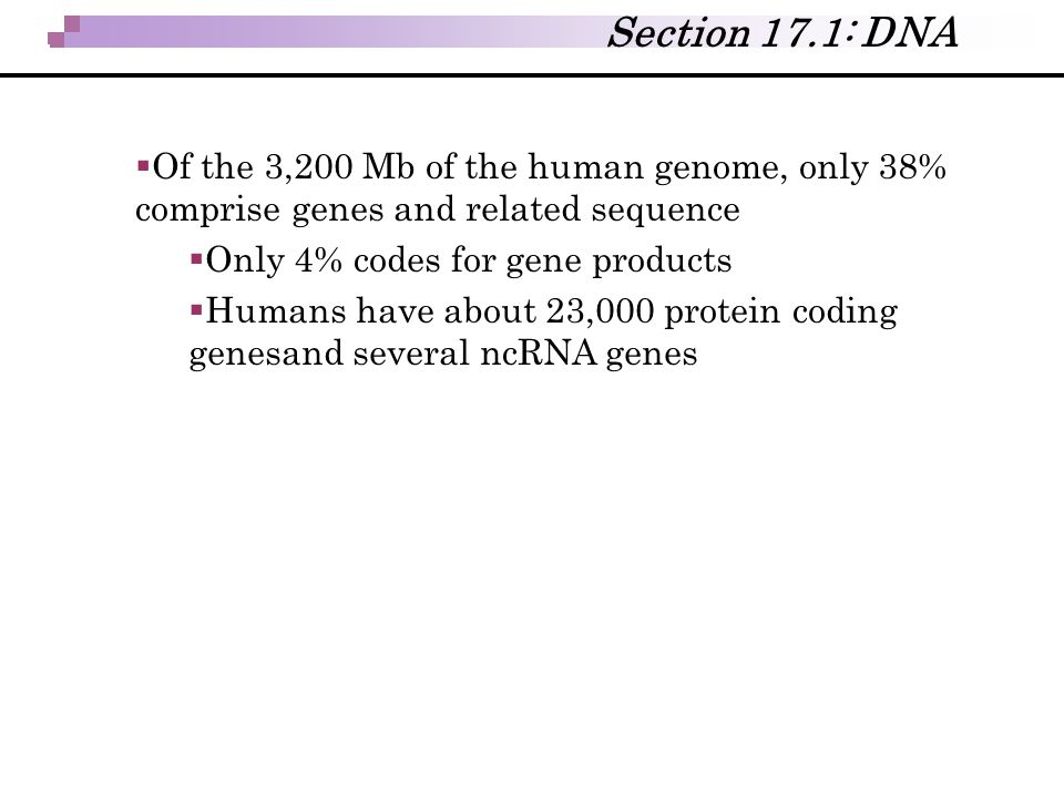  Of the 3,200 Mb of the human genome, only 38% comprise genes and related sequence  Only 4% codes for gene products  Humans have about 23,000 prote