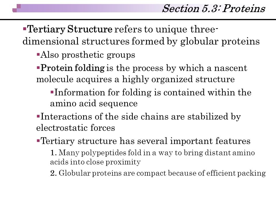 Section 5.3: Proteins  Tertiary Structure refers to unique three- dimensional structures formed by globular proteins  Also prosthetic groups  Prote