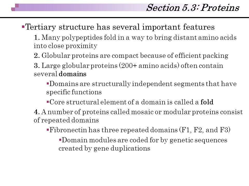 Section 5.3: Proteins  Tertiary structure has several important features 1. Many polypeptides fold in a way to bring distant amino acids into close p