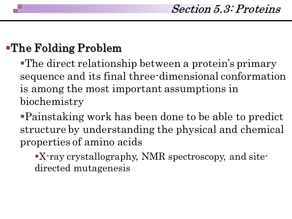  The Folding Problem  The direct relationship between a protein's primary sequence and its final three-dimensional conformation is among the most im