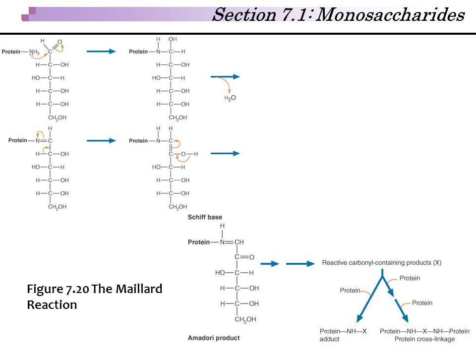 Section 7.1: Monosaccharides Figure 7.20 The Maillard Reaction