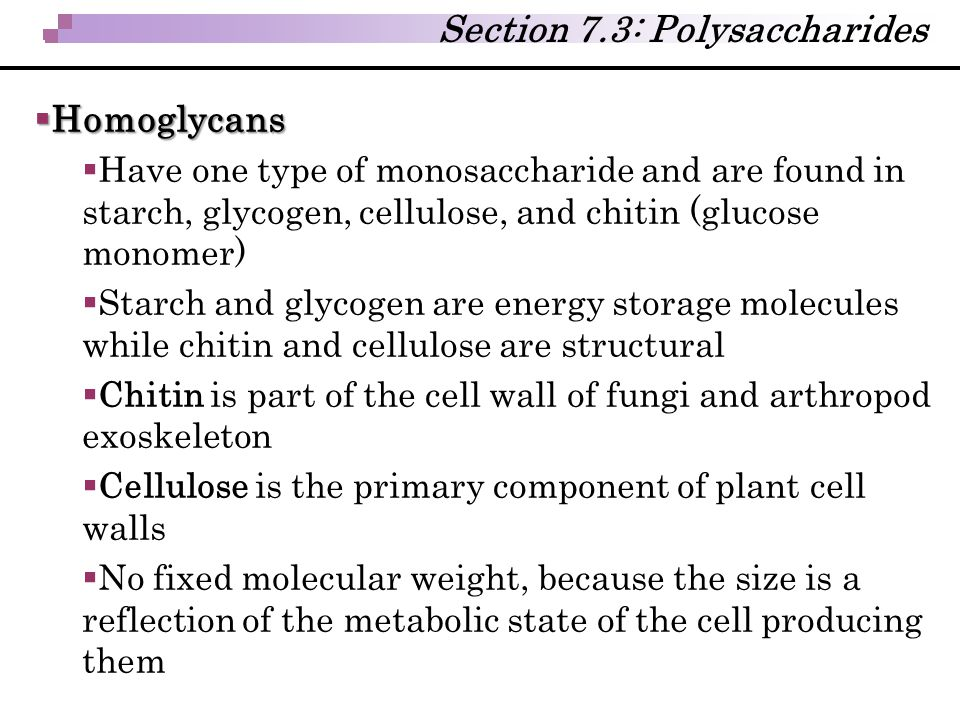 Section 7.3: Polysaccharides  Homoglycans  Have one type of monosaccharide and are found in starch, glycogen, cellulose, and chitin (glucose monomer