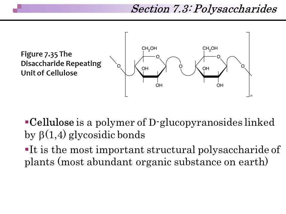 Section 7.3: Polysaccharides  Cellulose is a polymer of D -glucopyranosides linked by  (1,4) glycosidic bonds  It is the most important structural