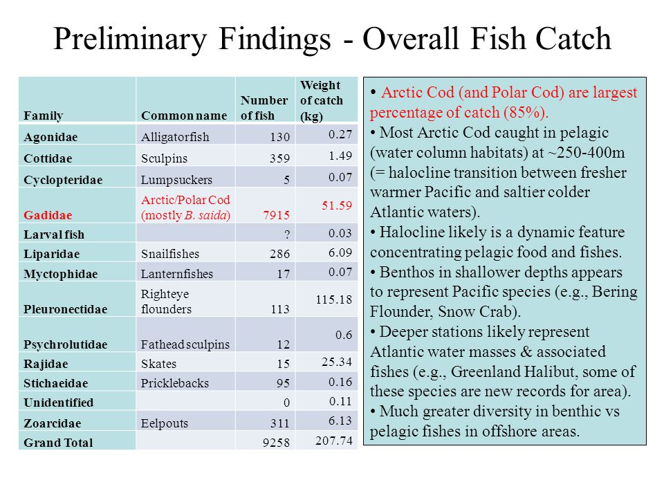 Preliminary Findings - Overall Fish Catch FamilyCommon name Number of fish Weight of catch (kg) AgonidaeAlligatorfish130 0.27 CottidaeSculpins359 1.49