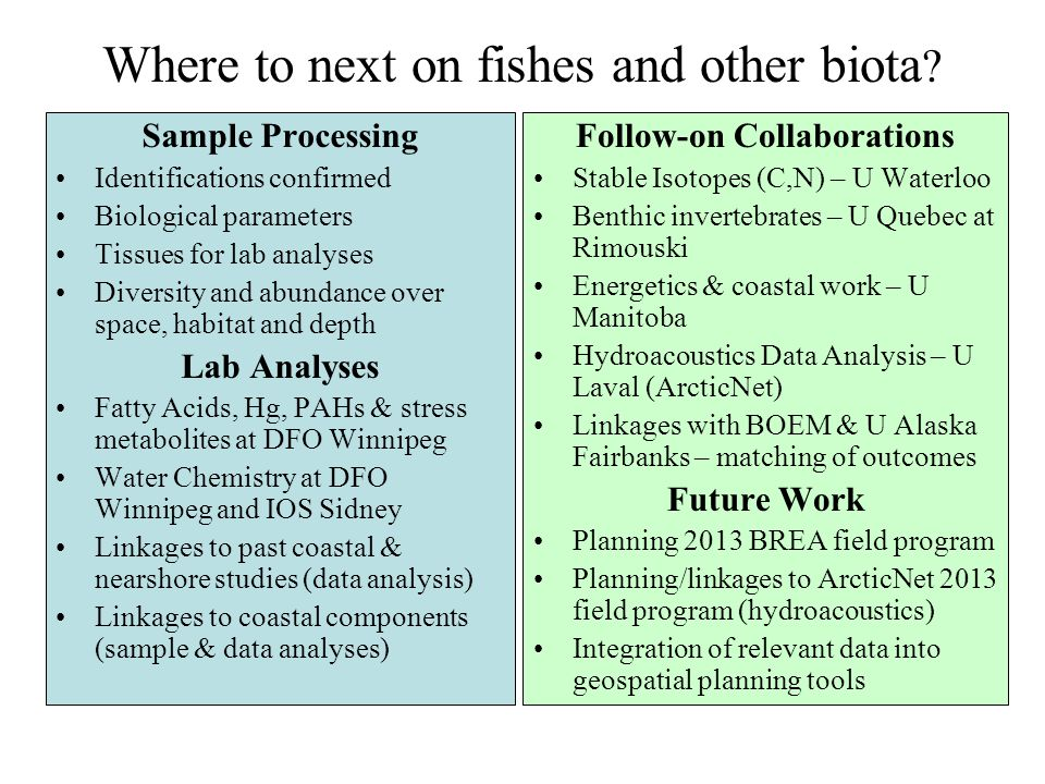 Where to next on fishes and other biota ? Sample Processing Identifications confirmed Biological parameters Tissues for lab analyses Diversity and abu