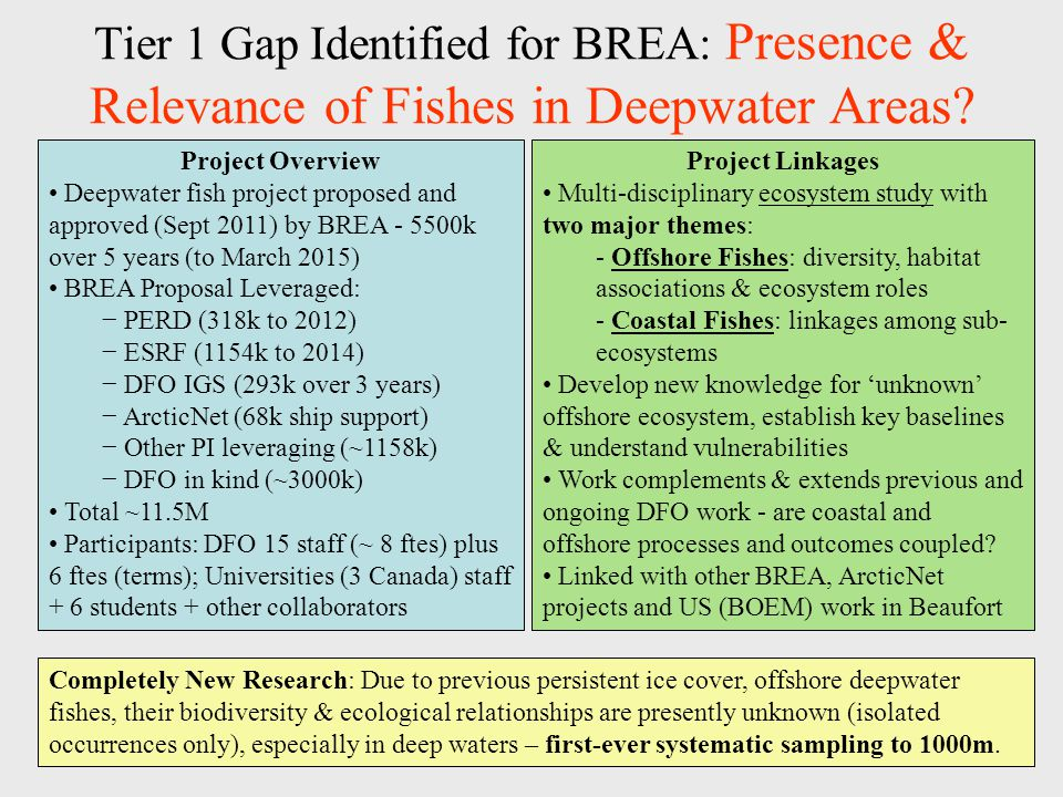 Tier 1 Gap Identified for BREA: Presence & Relevance of Fishes in Deepwater Areas? Project Linkages Multi-disciplinary ecosystem study with two major