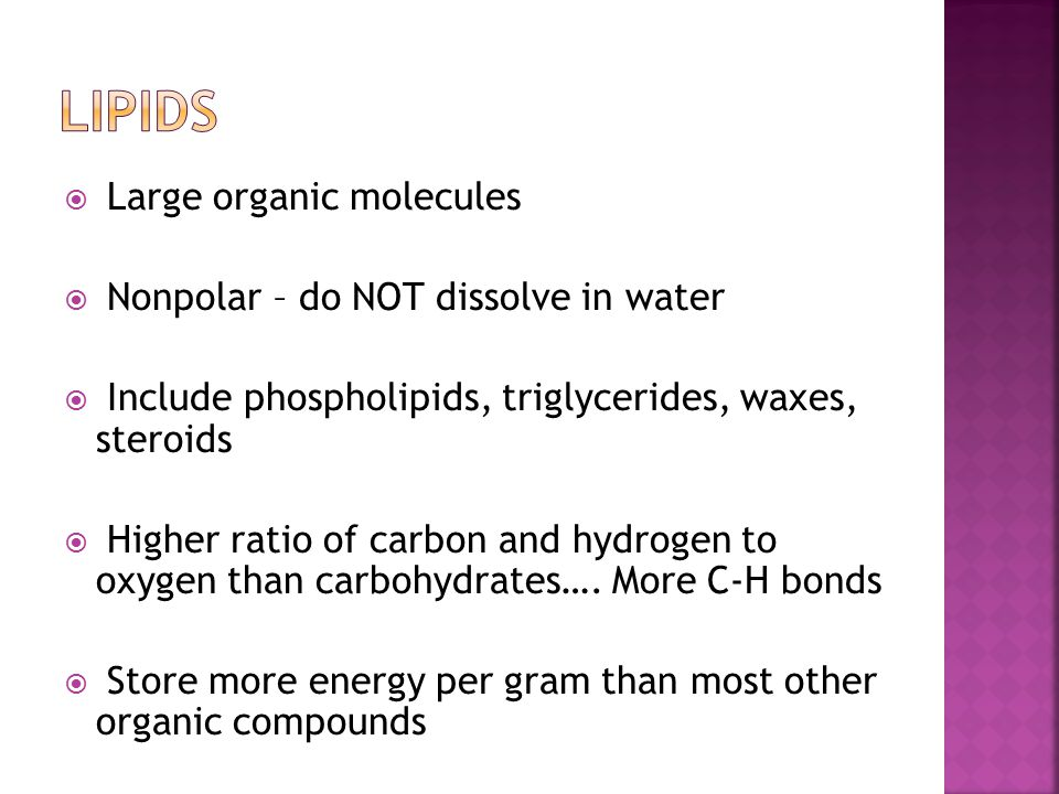  Large organic molecules  Nonpolar – do NOT dissolve in water  Include phospholipids, triglycerides, waxes, steroids  Higher ratio of carbon and h