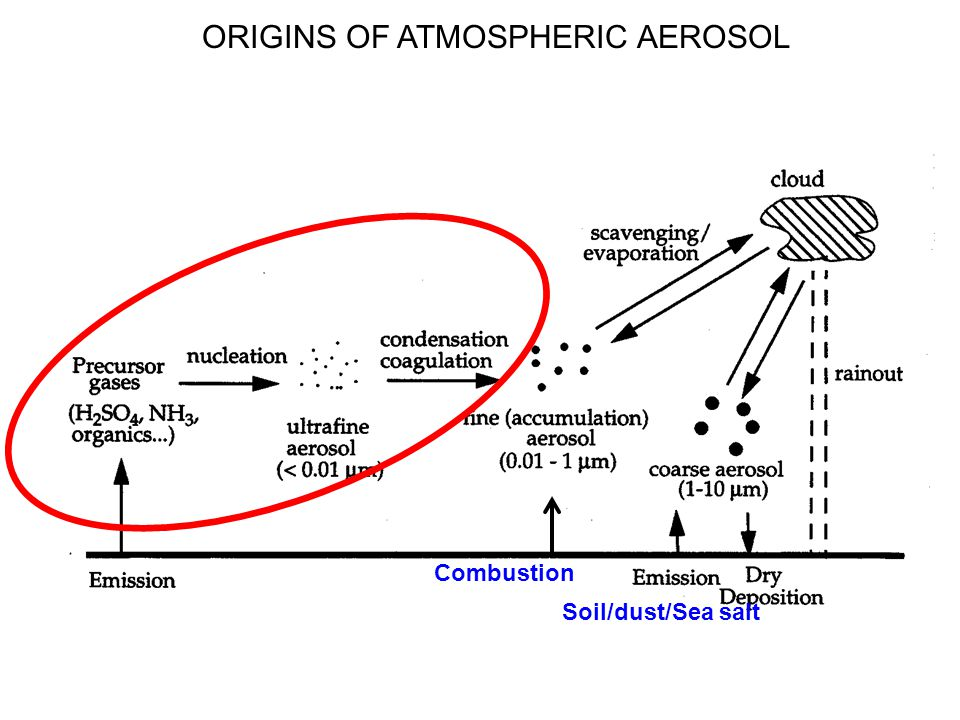 ORIGINS OF ATMOSPHERIC AEROSOL Soil/dust/Sea salt Combustion