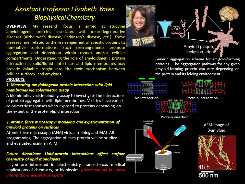 Assistant Professor Elizabeth Yates Biophysical Chemistry OVERVIEW: My research focus is aimed at studying amyloidogenic proteins associated with neurodegenerative diseases (Alzheimer s disease, Parkinson s disease, etc.).