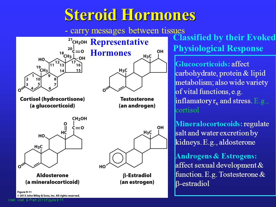 Steroid Hormones Representative Hormones Classified by their Evoked Physiological Response Glucocorticoids: affect carbohydrate, protein & lipid metabolism; also wide variety of vital functions, e.g.
