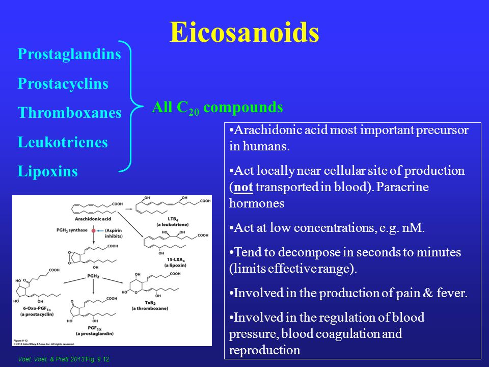 Eicosanoids Prostaglandins Prostacyclins Thromboxanes Leukotrienes Lipoxins Arachidonic acid most important precursor in humans.