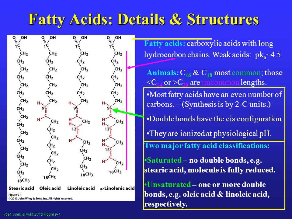 Voet, Voet, & Pratt 2013 Figure 9-1 Fatty Acids: Details & Structures Fatty acids: carboxylic acids with long hydrocarbon chains.