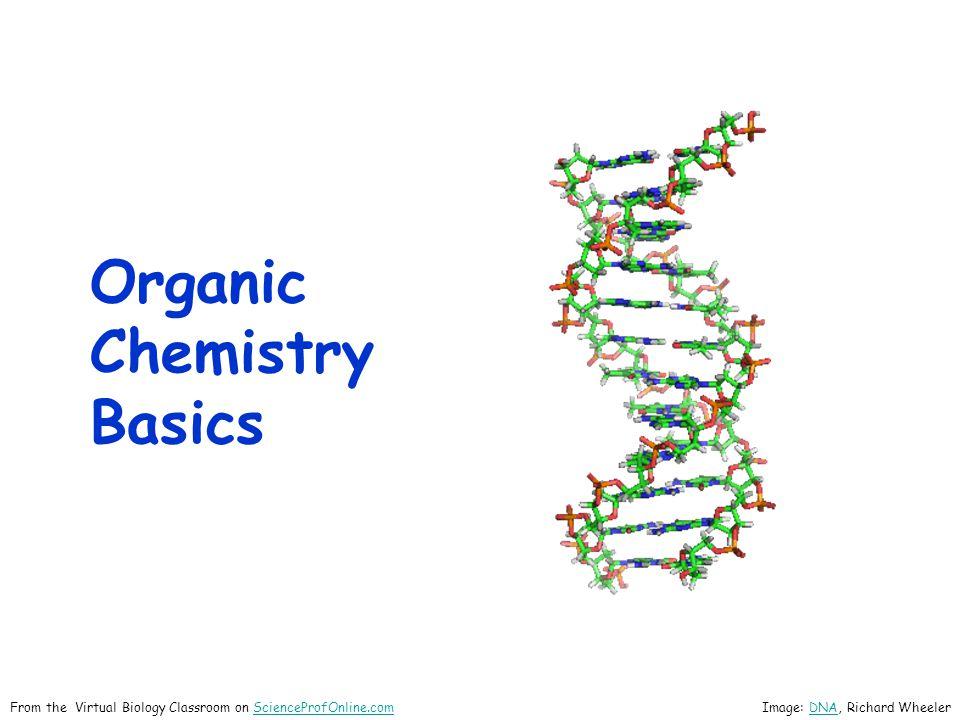 Organic Chemistry Basics Image: DNA, Richard WheelerDNAFrom the Virtual Biology Classroom on ScienceProfOnline.comScienceProfOnline.com