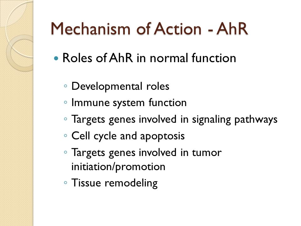 Mechanism of Action - AhR Roles of AhR in normal function ◦ Developmental roles ◦ Immune system function ◦ Targets genes involved in signaling pathways ◦ Cell cycle and apoptosis ◦ Targets genes involved in tumor initiation/promotion ◦ Tissue remodeling