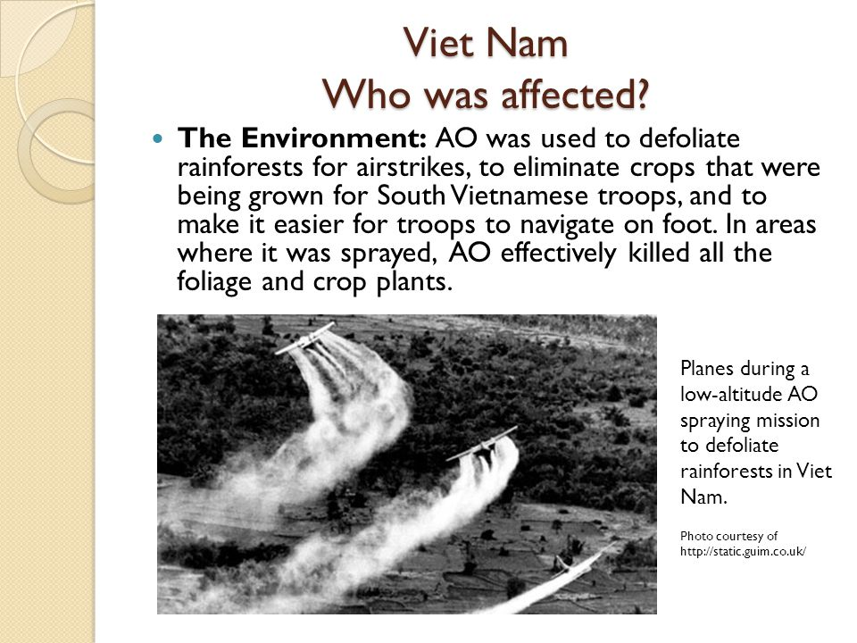 Viet Nam Who was affected? The Environment: AO was used to defoliate rainforests for airstrikes, to eliminate crops that were being grown for South Vi