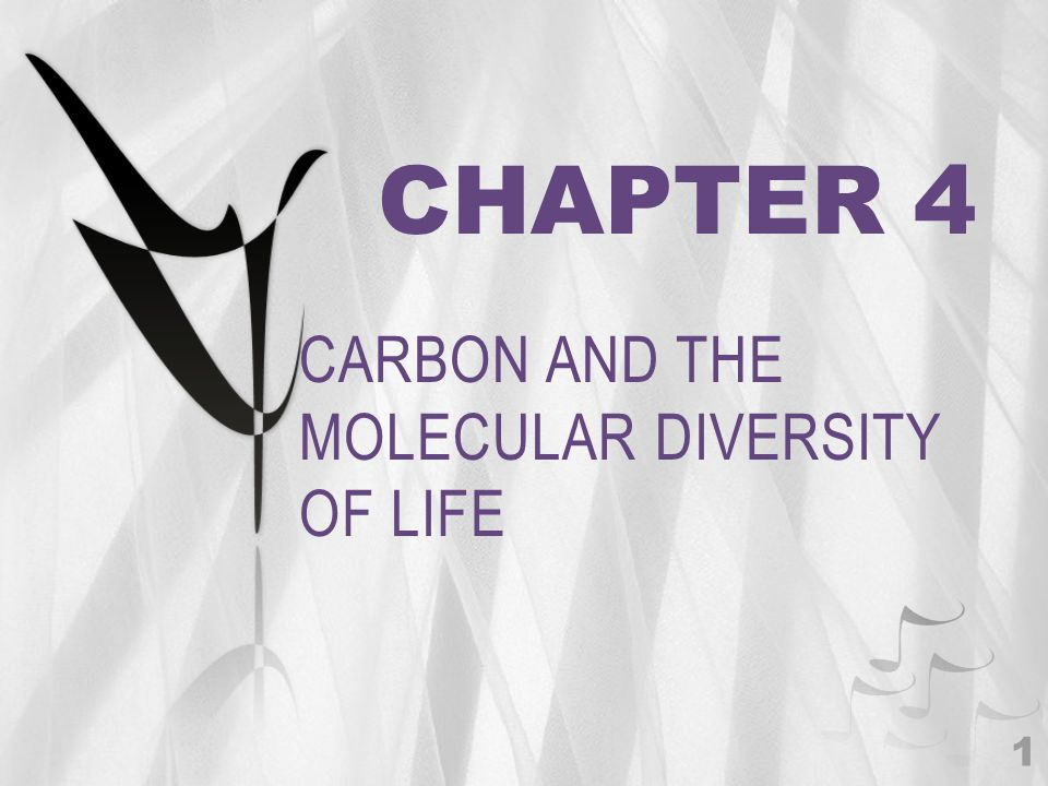 CHAPTER 4 CARBON AND THE MOLECULAR DIVERSITY OF LIFE 1