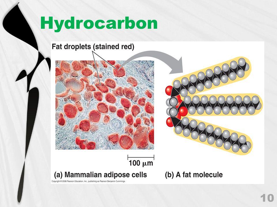 Hydrocarbon 10