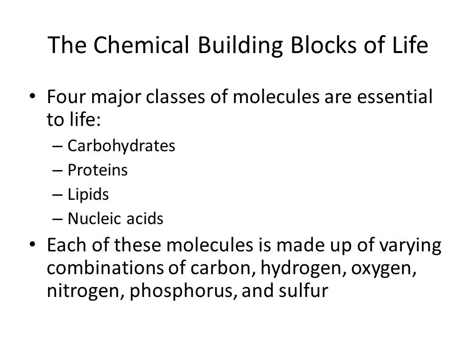 The Chemical Building Blocks of Life Four major classes of molecules are essential to life: – Carbohydrates – Proteins – Lipids – Nucleic acids Each of these molecules is made up of varying combinations of carbon, hydrogen, oxygen, nitrogen, phosphorus, and sulfur