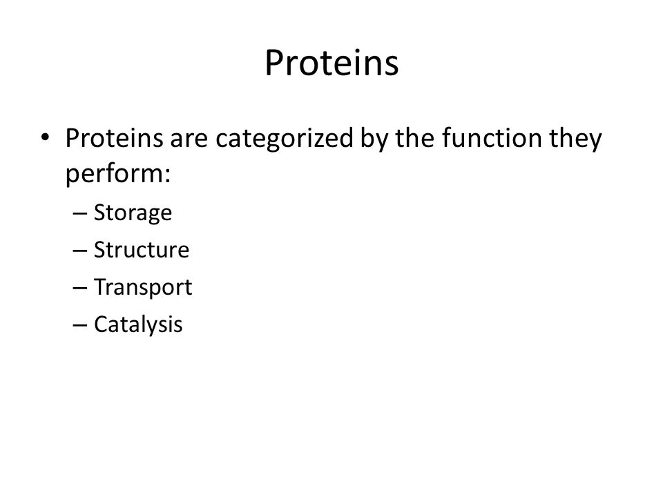 Proteins Proteins are categorized by the function they perform: – Storage – Structure – Transport – Catalysis