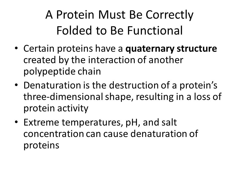 A Protein Must Be Correctly Folded to Be Functional Certain proteins have a quaternary structure created by the interaction of another polypeptide cha