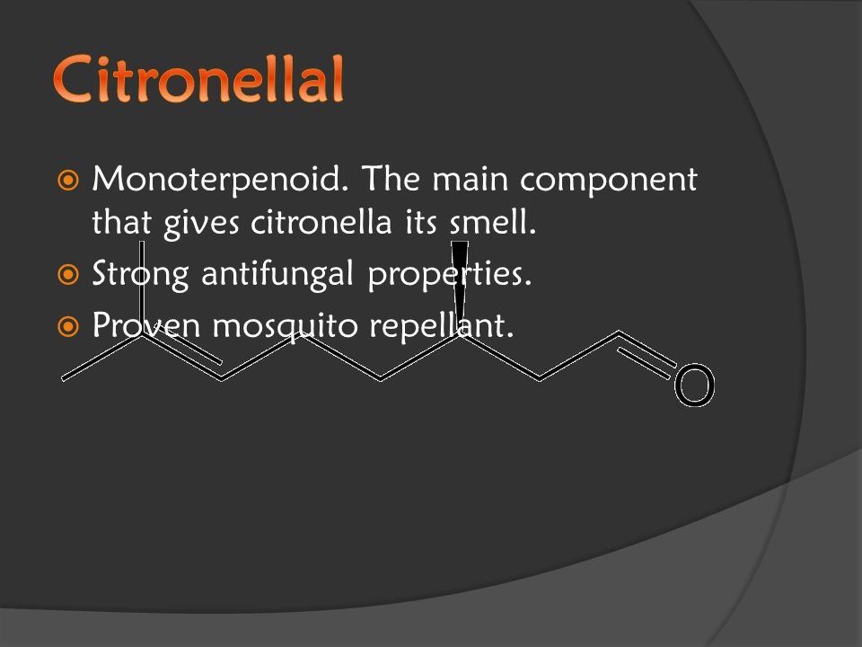  Monoterpenoid. The main component that gives citronella its smell.