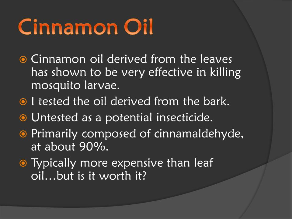  Cinnamon oil derived from the leaves has shown to be very effective in killing mosquito larvae.