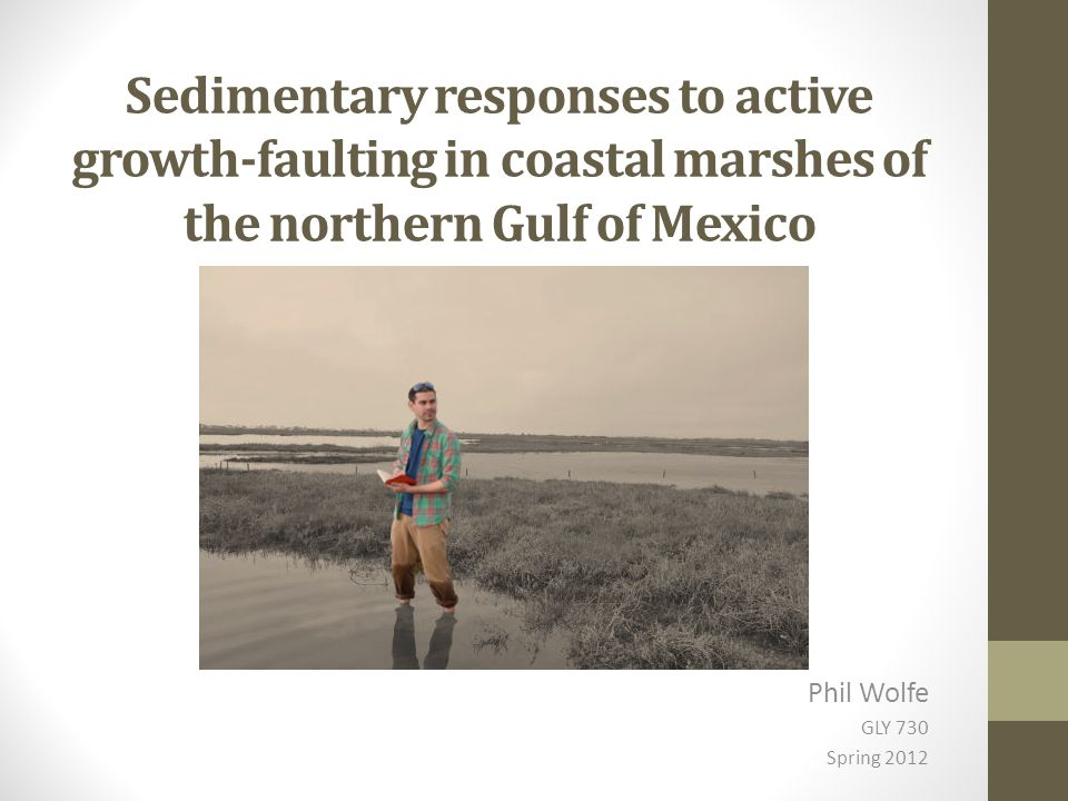 Sedimentary responses to active growth-faulting in coastal marshes of the northern Gulf of Mexico Phil Wolfe GLY 730 Spring 2012
