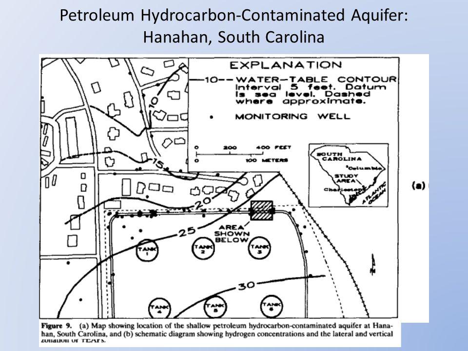 Petroleum Hydrocarbon-Contaminated Aquifer: Hanahan, South Carolina