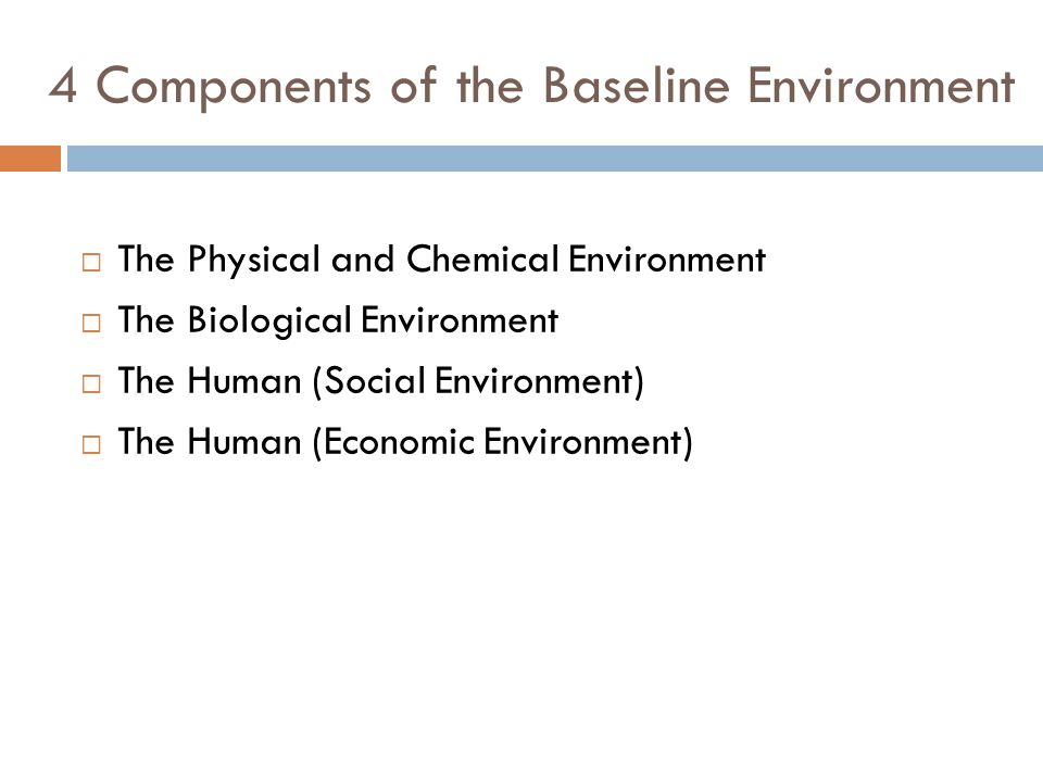4 Components of the Baseline Environment  The Physical and Chemical Environment  The Biological Environment  The Human (Social Environment)  The Human (Economic Environment)