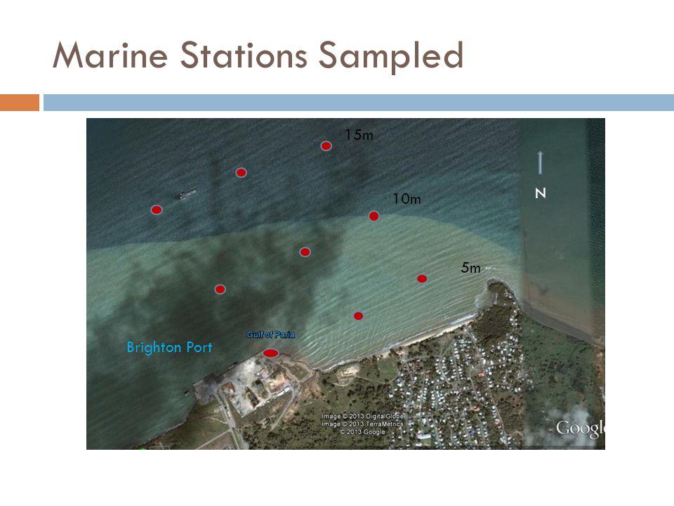 Marine Stations Sampled 5m 10m 15m N Brighton Port