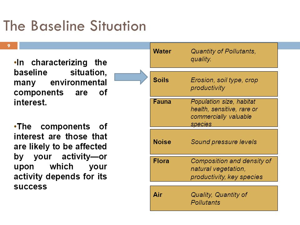 The Baseline Situation 9 In characterizing the baseline situation, many environmental components are of interest.