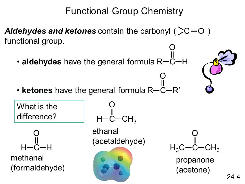 24.4 Functional Group Chemistry Aldehydes and ketones contain the carbonyl ( ) functional group.