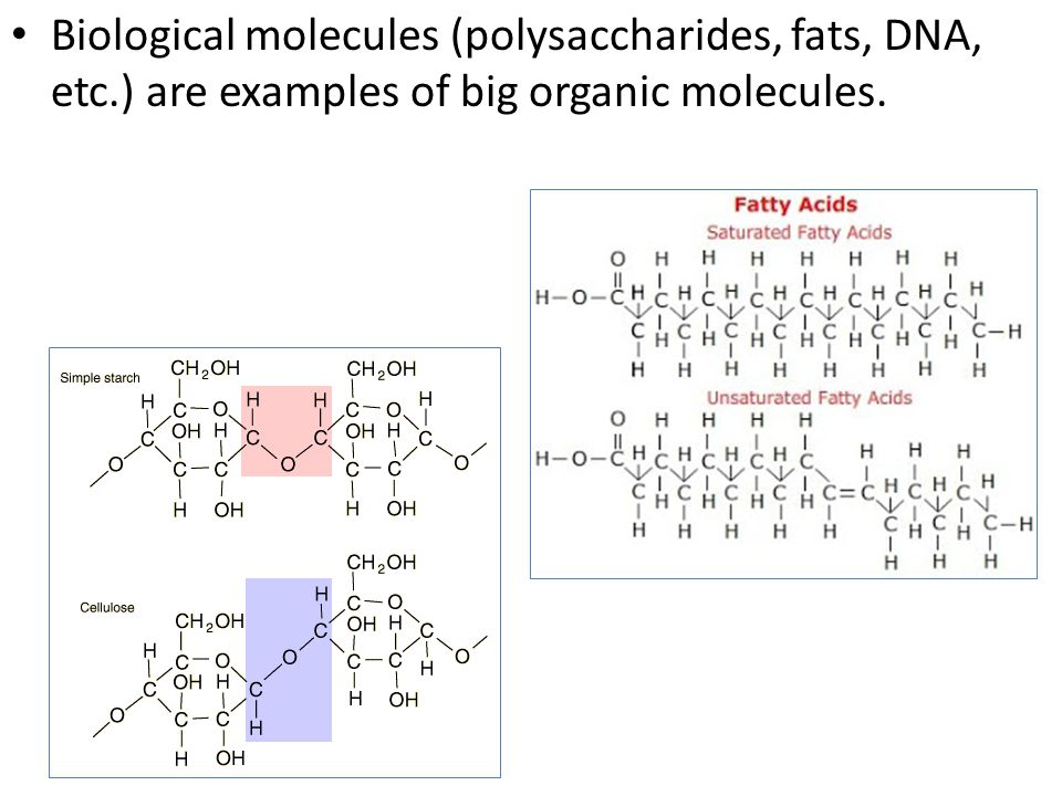Biological molecules (polysaccharides, fats, DNA, etc.) are examples of big organic molecules.