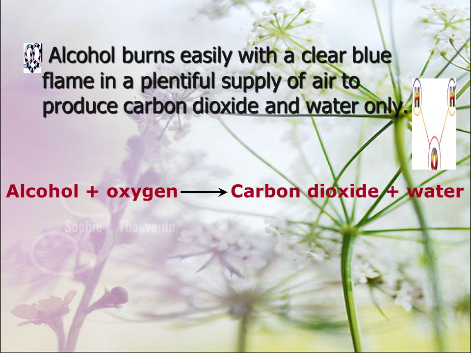 Alcohol is a colourless volatile liquid with a sweet smell.